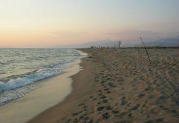 Spiaggia_della_lecciona