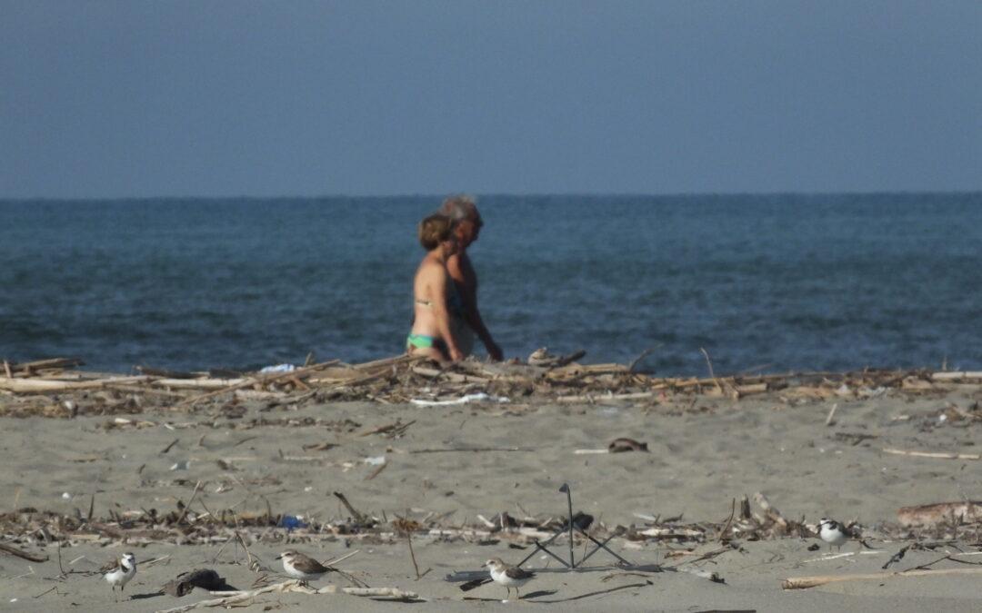 Il Parco al G20 delle spiagge