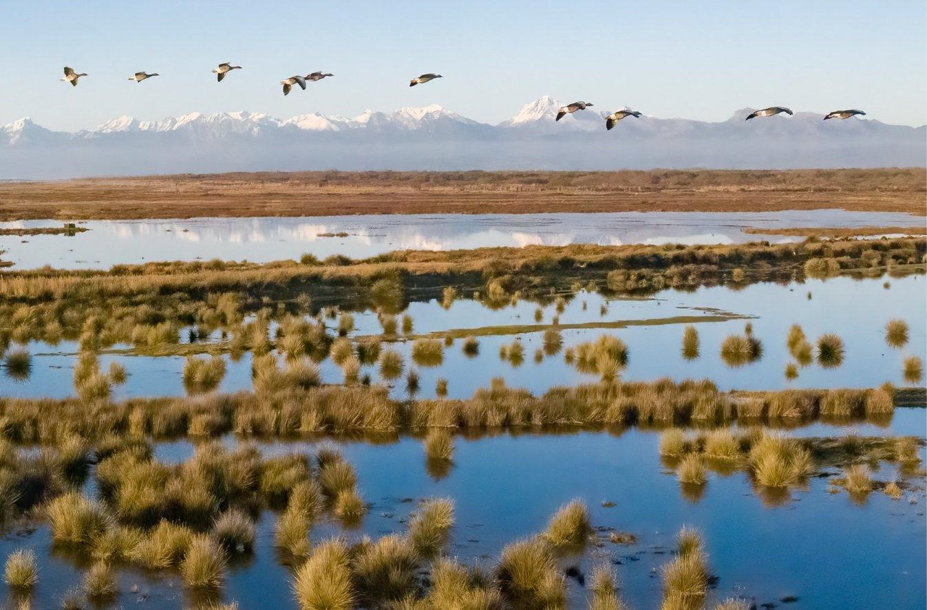 Lago, parte il risanamento ambientale