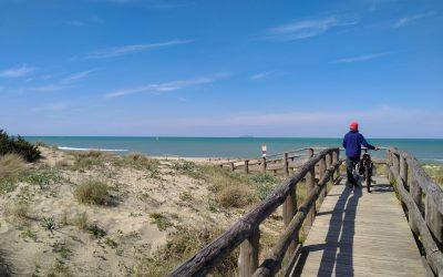 Dall'ombra dei pini alle dune del mare