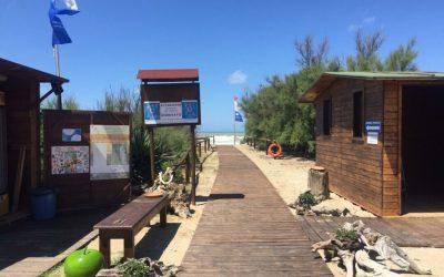 Una giornata alla spiaggia del Gombo